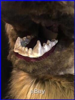 Brown Realistic Kodiak Grizzly Bear Fursuit Head Costume With Bendy Ears
