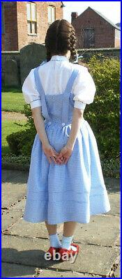 Dorothy wizard of oz small age 14+ costume homemade + basket/wig & toy dog