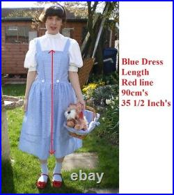 Dorothy wizard of oz small costume homemade + basket/wig & toy dog